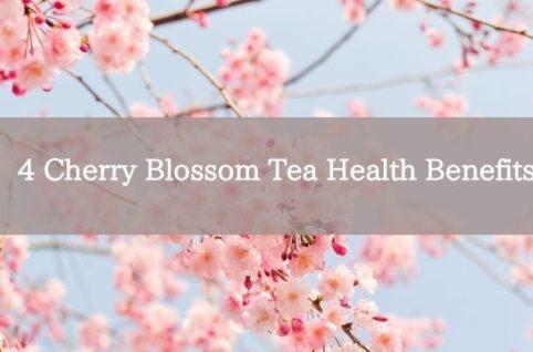 4 Cherry Blossom Tea Health Benefits