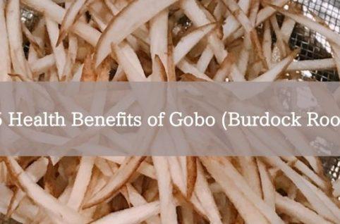 5 Health Benefits of Gobo (Burdock Root)
