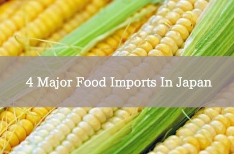 4 Major Food Imports In Japan
