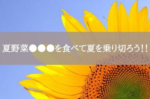 夏野菜●●●を食べて夏を乗り切ろう!!