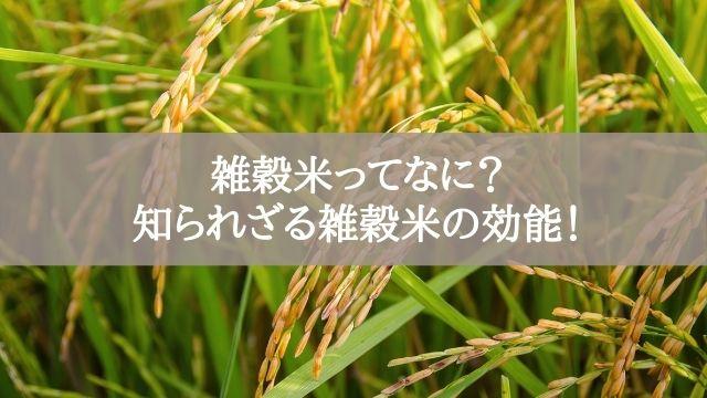 雑穀米ってなに?知られざる雑穀米の効能!