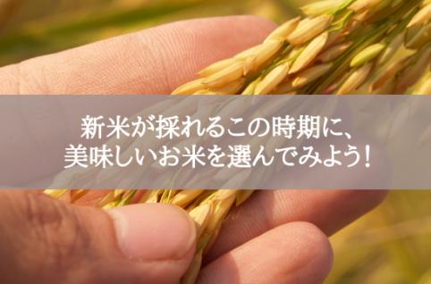 新米が採れるこの時期に、美味しいお米を選んでみよう!