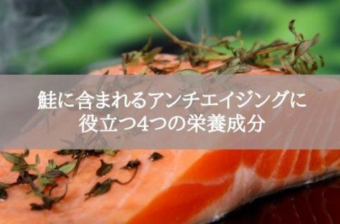 鮭に含まれるアンチエイジングに 役立つ4つの栄養成分