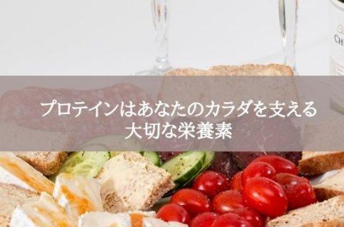 プロテインはあなたのカラダを支える大切な栄養素