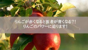 りんごが赤くなると医者が青くなる?!りんごのパワーに迫ります!