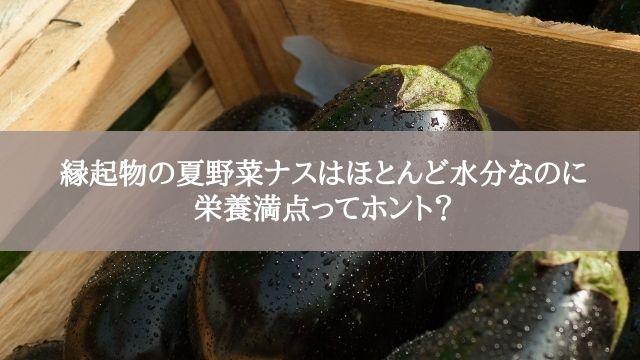 縁起物の夏野菜ナスはほとんど水分なのに栄養満点ってホント?