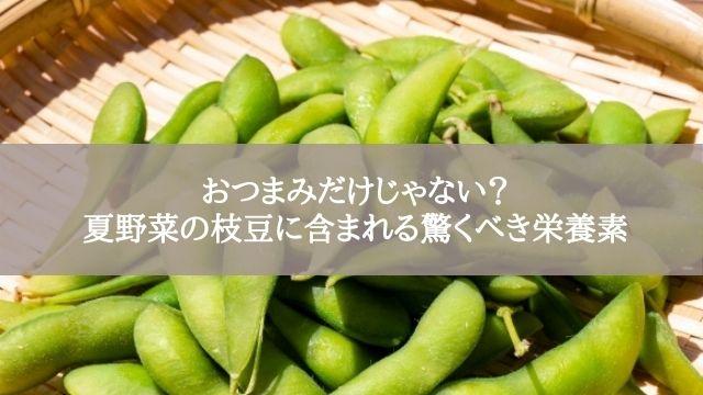 おつまみだけじゃない?夏野菜の枝豆に含まれる驚くべき栄養素