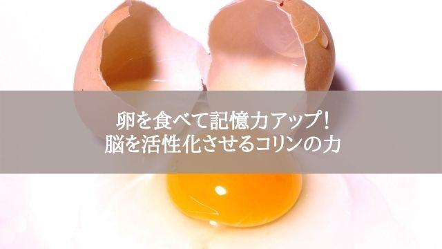 卵を食べて記憶力アップ!脳を活性化させるコリンの力